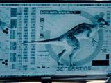 Unidentified Pachycephalosaur Hybrid