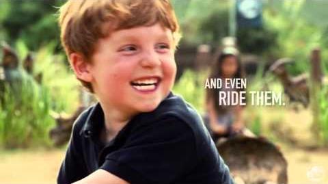 Gentle Giants Petting Zoo Promo Video