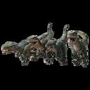 Raptor squad as babies