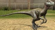 Utahraptor lvl 10