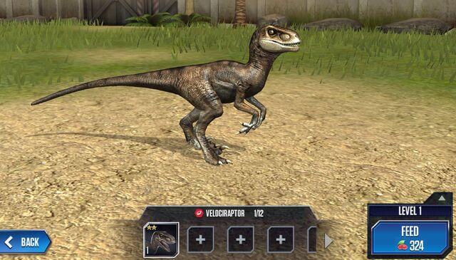 File:Velociraptor Base.jpg