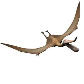 Pterodaustro-jurassic-world-the-game