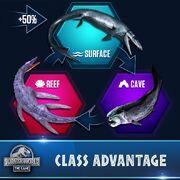 Type Char Aquatic