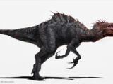 Malusaurus
