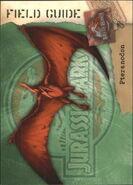 2001 Jurassic Park III 3-D 58 Pteranodon front
