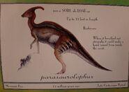 ParasaurolophusLostWorldFieldGuide
