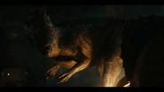 Battle-at-Big-Rock-Allosaurus-5