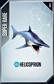 Helecoprion Card