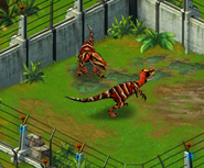 Velociraptor third evolution adults