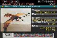 DimorphodonParkBuilder