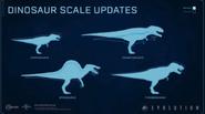 Evolution Size Rescale