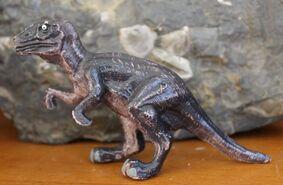 Raptor IMG 1901-700x457