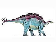 JIC Wuerhosaurus