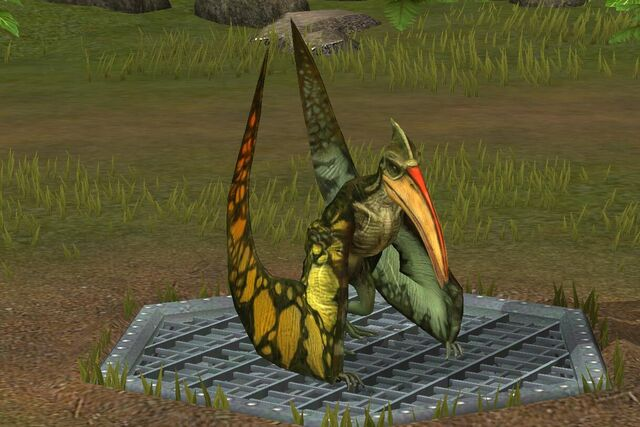 File:Pterodactylus (30).jpg