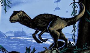 Raptor jw