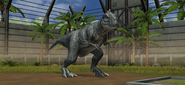 Jurassic World Majungasaurus (10)