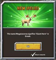 Megaloceros mess1