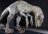Raptor suit (JP III female)