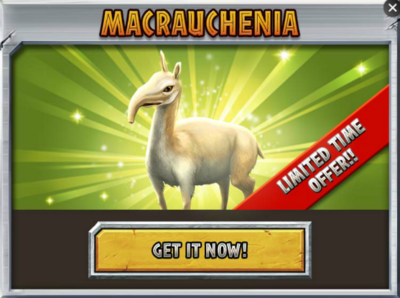 Macrauchenia Promo