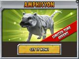 Amphicyon