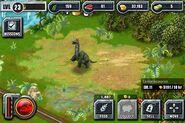 Camarasaurus baby