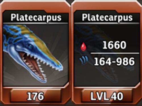 Platecarpus Level 40 Tournament-Battle Arena Profile Picture