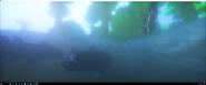 Coelacanths 2