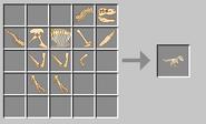 Rex skeleton