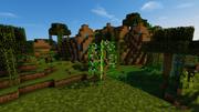 JC screenshot - West Indian Lilac