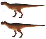 Concept - Carnotaurus