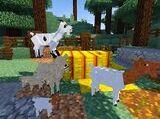 Overworld Animals