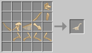 Brach skeleton