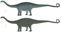 Concept - Apatosaurus