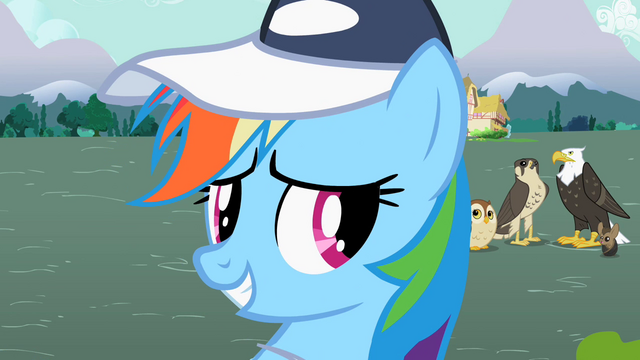 File:S2E07 Rainbow Dash smiling 2.png