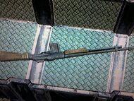 30-06 Rifle