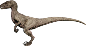 Raptor Tundra