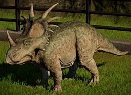 JWEStyracosaurus