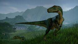Herrerasaurus 2 2