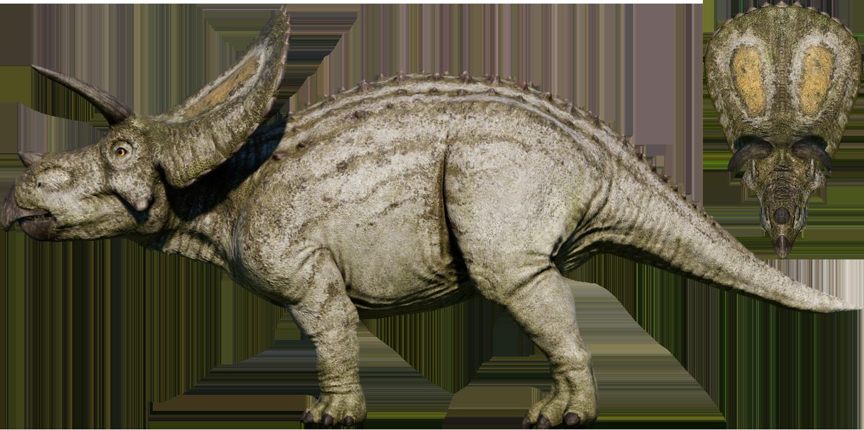 torosaurus  jurassic world evolution wiki  fandom