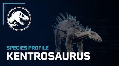 Species Profile - Kentrosaurus
