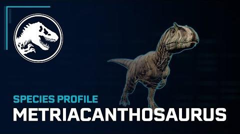 Species Profile - Metriacanthosaurus