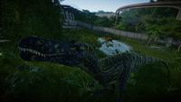 Suchomimus Pair