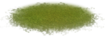 Grasslandscape