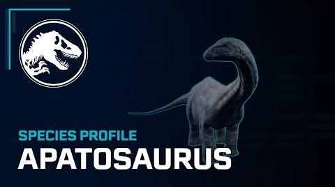Species Profile - Apatosaurus