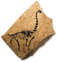 Sauropodfossilicon