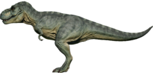 Rex97
