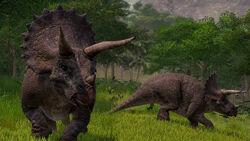 JWE Screenshot Triceratops 93 04 copyright