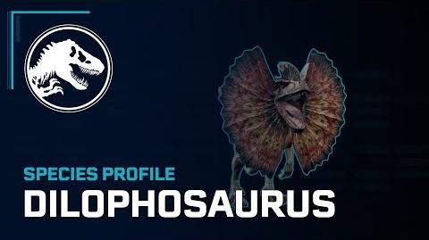 Species Profile - Dilophosaurus