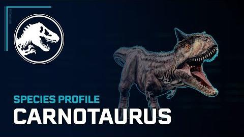 Species Profile - Carnotaurus