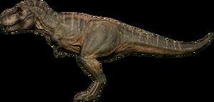 Rex Tundra